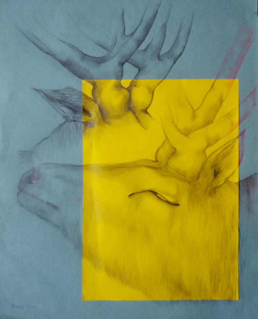 Cerf. 2019 / 40x50 cm